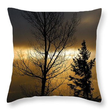 Winter Sunrise 2 Throw Pillow by Sebastian Musial