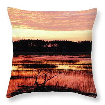 Throw Pillow featuring the photograph Winter Sunrise by Margaret Palmer
