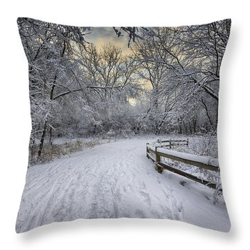 Throw Pillow featuring the photograph Winter Sunrise by Sebastian Musial