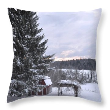 Throw Pillow featuring the photograph Winter Sunset - 1 by John Black