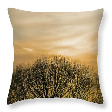 Winter Sunset Throw Pillow by Charles Ables
