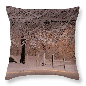 Winter Sunset Ft Hill Park Throw Pillow