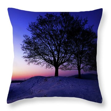 Winter Sunset Throw Pillow by Hannes Cmarits