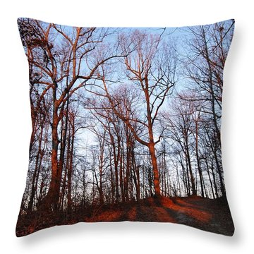 Winter Sunset In Georgia Mountains Throw Pillow