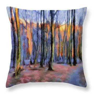 Winter Sunset In The Beech Wood Throw Pillow by Menega Sabidussi