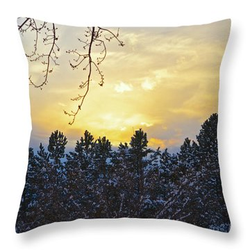 Winter Sunset On The Tree Farm #1 Throw Pillow
