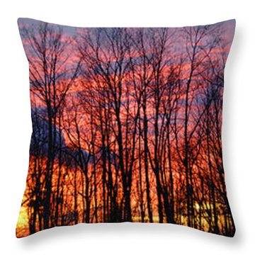 Throw Pillow featuring the photograph Winter Sunset Panorama by Francesa Miller