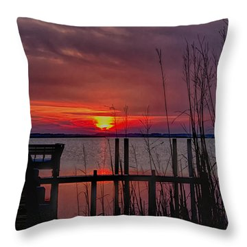 Winter Sunset Throw Pillow by Sandra Anderson