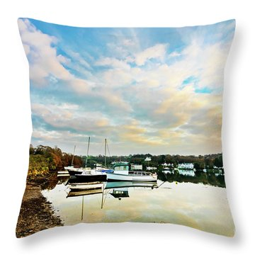 Winter Sunset Throw Pillow by Terri Waters