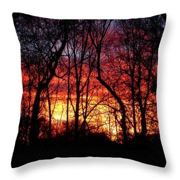 Winter Surprise Throw Pillow