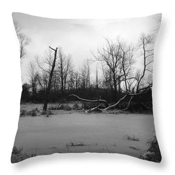 Winter Swamp Throw Pillow
