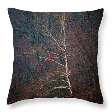 Winter Sycamore Throw Pillow