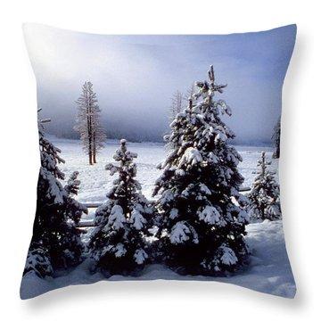 Winter Takes All Throw Pillow