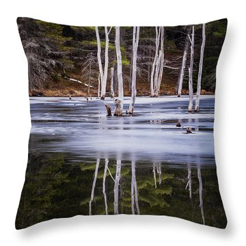 Winter Thaw Relections Throw Pillow by Tom Singleton