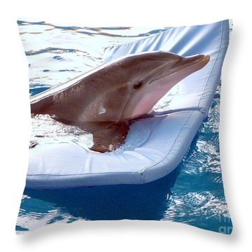 Winter The Dolphin Throw Pillow