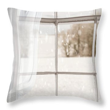Winter Through A Window Throw Pillow