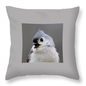 Winter Titmouse Throw Pillow