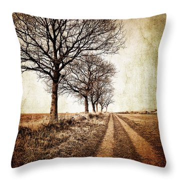 Winter Track With Trees Throw Pillow