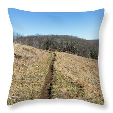 Winter Trail - December 7, 2016 Throw Pillow