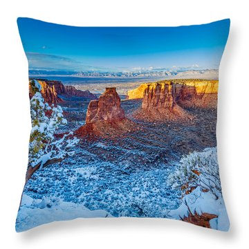 Winter Trails  Throw Pillow