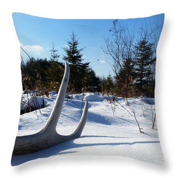 Winter Treasure Throw Pillow