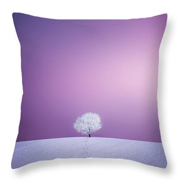 Throw Pillow featuring the photograph Winter Tree by Bess Hamiti