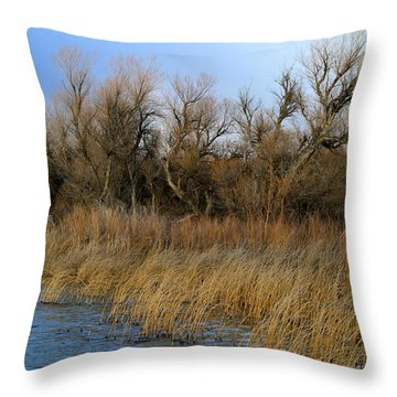 Winter Trees Along The Snake Throw Pillow