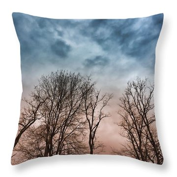 Winter Trees Dreamscape Throw Pillow