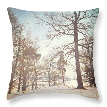 Throw Pillow featuring the photograph Winter Trees by Lyn Randle