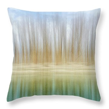 Winter Trees On A River Bank Reflecting Into Water Throw Pillow