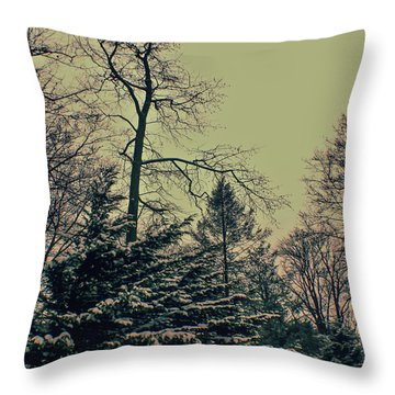 Winter Trees Throw Pillow by Sandy Moulder
