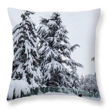 Winter Trekking-2 Throw Pillow