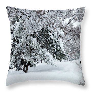 Winter Trekking-3 Throw Pillow