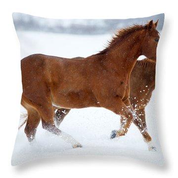 Winter Trot Throw Pillow