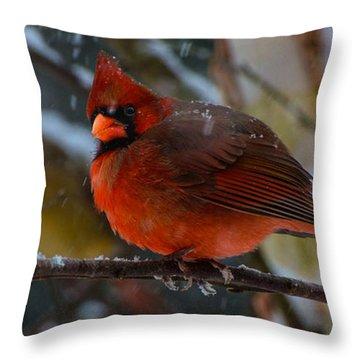 Winter Twosome  Throw Pillow