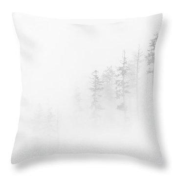 Winter Veil Throw Pillow by Mike  Dawson