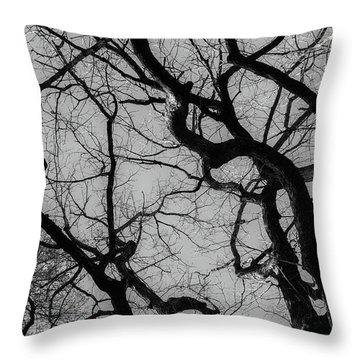 Winter Veins Throw Pillow