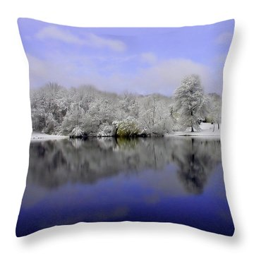 Winter View Throw Pillow by Karol Livote