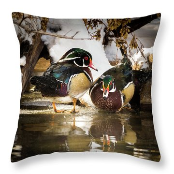 Winter Visitors - Wood Ducks Throw Pillow