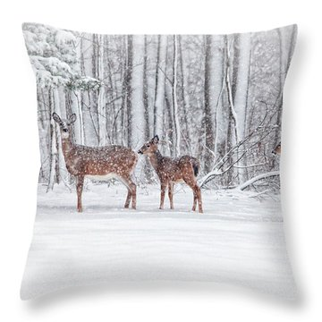 Winter Visits Throw Pillow