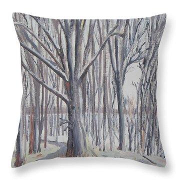 Winter Walk Throw Pillow by Robert P Hedden