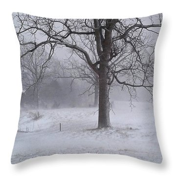 Winter Walnut Throw Pillow by Denise Romano