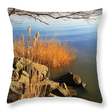 Winter Water Throw Pillow