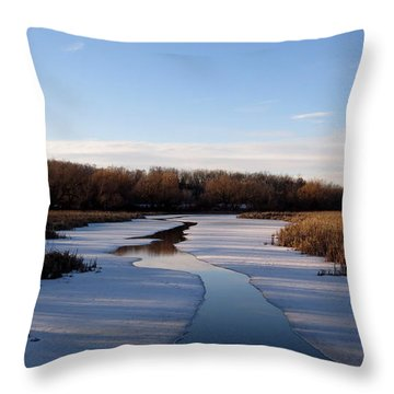 Winter Waters At Lake Kegonsa Throw Pillow by Kimberly Mackowski