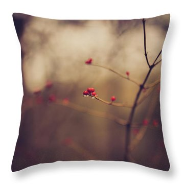 Throw Pillow featuring the photograph Winter Whispers by Shane Holsclaw
