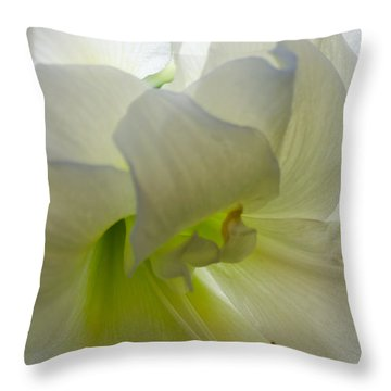 Winter White Amaryllis Throw Pillow