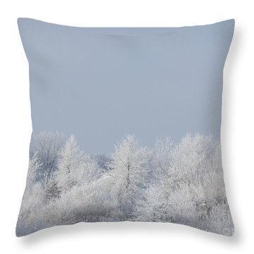 Winter White Throw Pillow by Deborah DeLaBarre