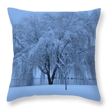 Winter Willow Tree Before Dawn_fort Worth_tx Throw Pillow