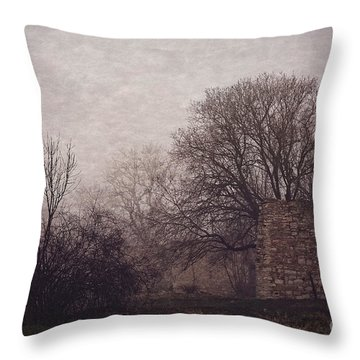 Winter Without Snow Throw Pillow