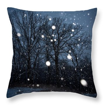 Throw Pillow featuring the photograph Winter Wonder by Annette Berglund